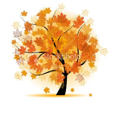 4 Pics 1 Word Autumn Leaf Crack